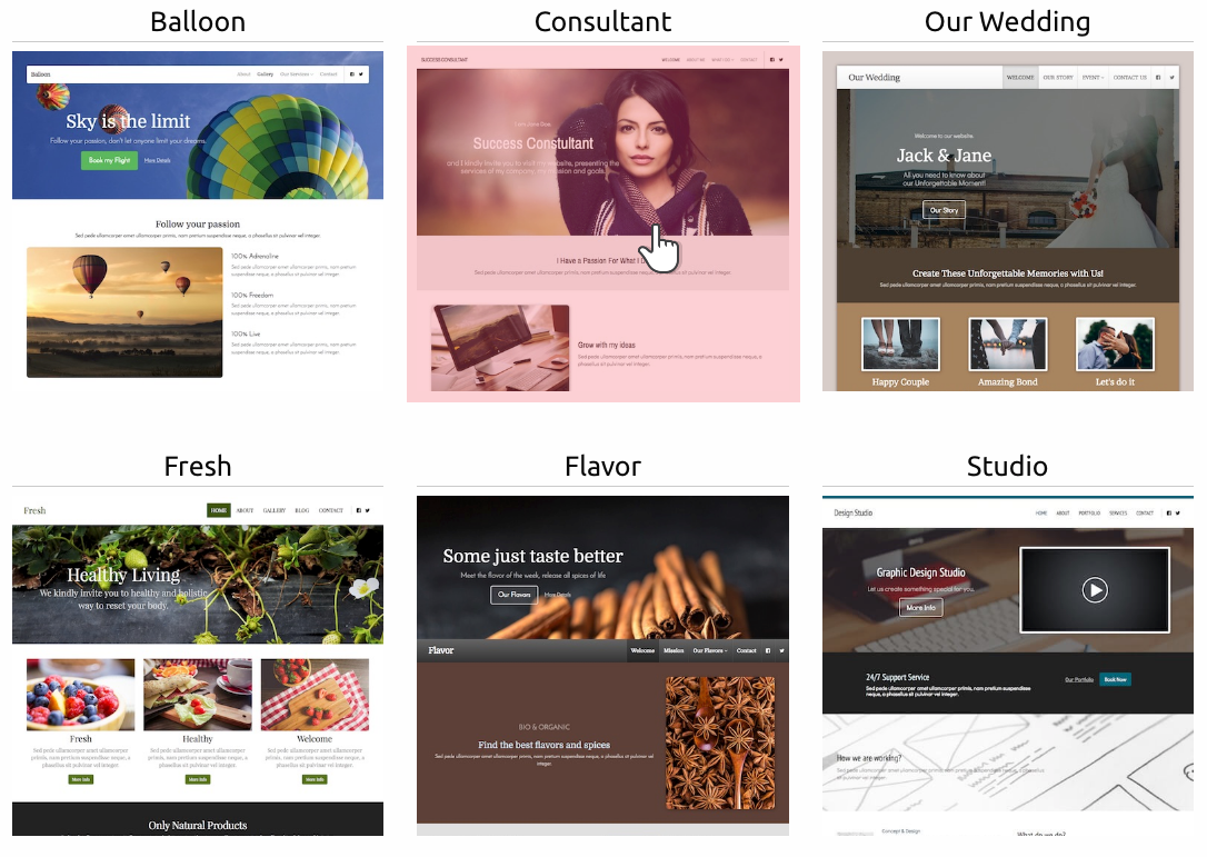 New Site Builder a variety of themes